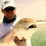 Gulp Redfish