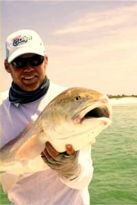 Gulp Redfish