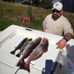 Redfish University redfish and speckled trout.